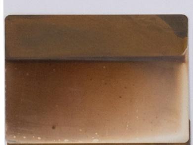 Abbildung 2: versilbertes Muster ohne Silberpassivierung nach einiger Zeit in schwefelhaltiger Atmosphäre